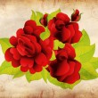 Grunge red roses with leaves — Stock Photo