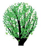 Arbusto com folhas verdes — Vetor de Stock