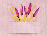 Vintage card with crocuses — Stockfoto