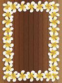 Frangipani frame on wood — Stock Photo