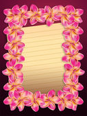 Pink plumeria flowers frame with paper — Stock Photo