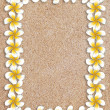 White plumeria frame on sand — Foto Stock