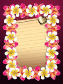 Plumeria flowers frame with paper — Stock Photo