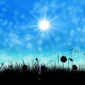 Silhouette of a grass field — Stock Photo