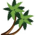 Two cartoon palms — Stock Vector