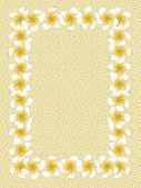 White frangipani flowers frame on sand — Stock Vector