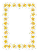 White frangipani flowers frame — Stock Vector