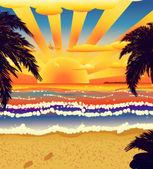 Solnedgång på stranden med palmer — Stockfoto