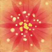 Flor de color rosa suave — Foto de Stock