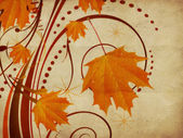 Autumn ornament with maple leaves — Stock Photo