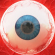 Eyeball — Stock Photo #30937935