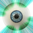 Stock Photo: Eyeball with rays