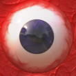 Stock Photo: Eyeball
