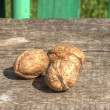 Mature walnuts on table — Stock Photo