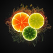 Foto Stock: Citrus slices design