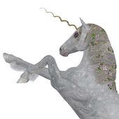 Unicornio mágico — Foto de Stock