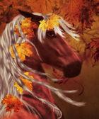 Autumn horse — Stock Photo