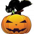 Black cat on pumpkin — Stock Vector