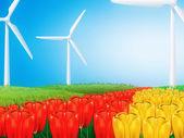 Wind turbine on field — Stock Photo