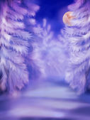White winter forest — Stock Photo