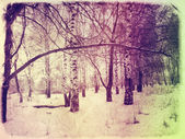 Grunge winter landscape — Stock Photo