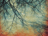 Retro paper with tree branches — Stock Photo