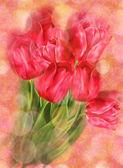 Tulips on Bokeh Background — 图库照片