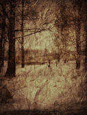 Vintage winter landscape — Stock Photo