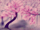 Blooming Sakura Trees — Stock Photo