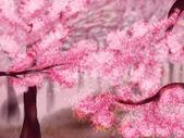 Blooming Sakura Trees — Stock Photo