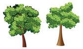 Arbre abstrait vert feuilles — Vecteur