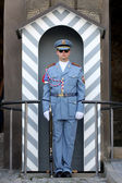 A Guard at Prague Castle — Stock Photo