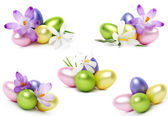 Easter eggs and crocus flowers — Stock Photo