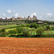 The medieval Village of Monteriggioni - Stock Photo