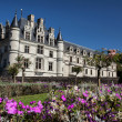 Chenonceau castle in Loire valley — 图库照片