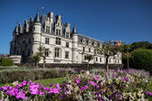 Chenonceau castle in Loire valley — Stock Photo