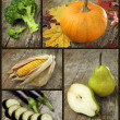 Stock Photo: Autumn crops