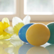 Painted Easter Eggs and Daffodils — Stock Photo #7370425