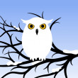 White Owl — Stock Vector