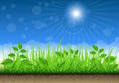 Granica trawa na tle jasne niebo — Wektor stockowy