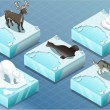 Isometric Arctic Animals on Ice — Stock Vector