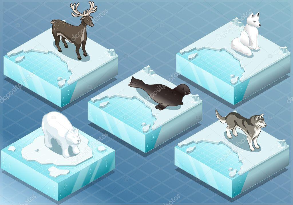 Ilustracao do animal bonito de patins de gelo