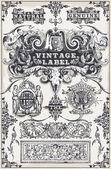 Vintage hand getrokken grafische banners en labels — Stockvector