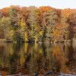 Lake Schlachtensee Fall Scene — Stock Photo