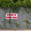 Stock Photo: Beware of Guard Dogs