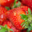 Delicious fresh ripened strawberries in a white bowl. - Stock Photo