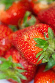 Delicious fresh ripened strawberries in a white bowl. — Stock Photo