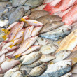 Heaps of fish in wet fish market — Stock Photo #19827611