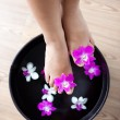 Feminine feet in orchid spa bowl — Stockfoto