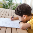 Young boy doing his homework in a home environment — Stock Photo